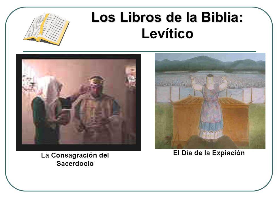 Los Libros de la Biblia: Levítico La Consagración del Sacerdocio