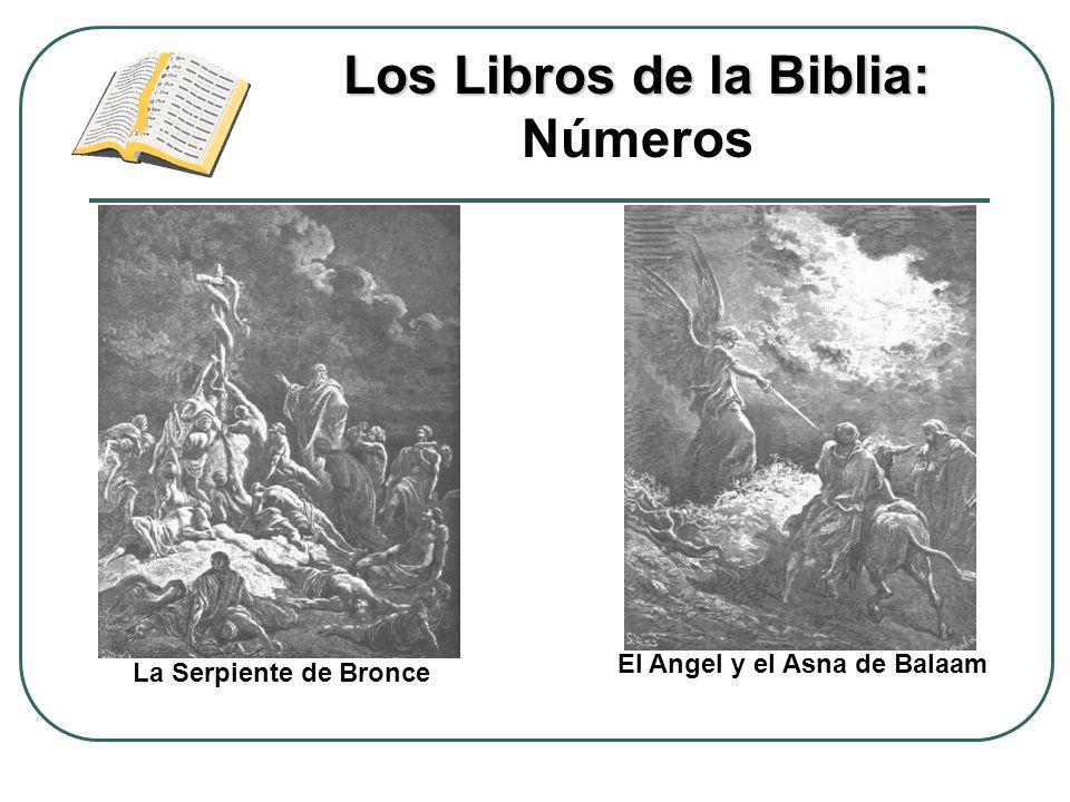 Los Libros de la Biblia: Números El Angel y el Asna de Balaam