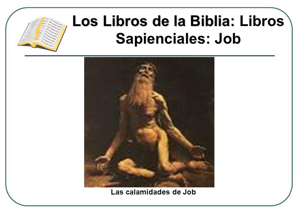 Los Libros de la Biblia: Libros Sapienciales: Job