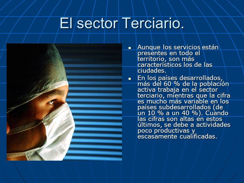 El sector Terciario. Aunque los servicios están presentes en todo el territorio, son más característicos los de las ciudades.