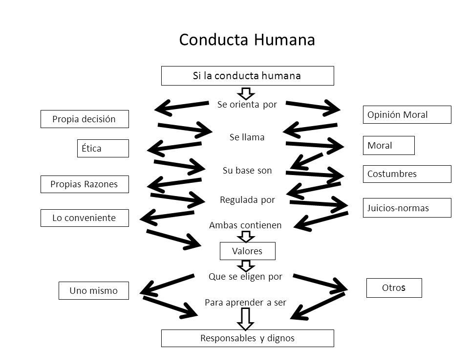 Conducta Humana Si la conducta humana Se orienta por Opinión Moral