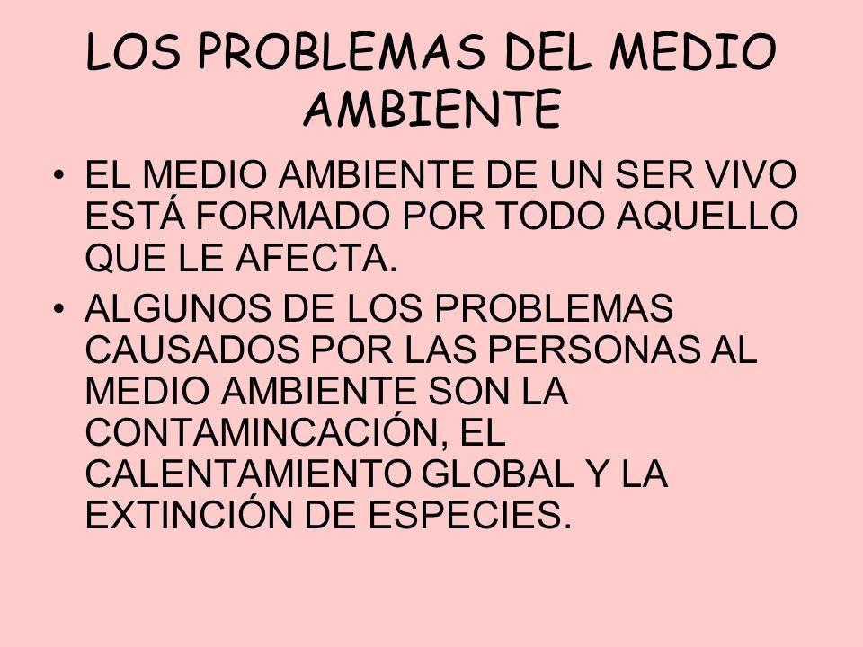 LOS PROBLEMAS DEL MEDIO AMBIENTE