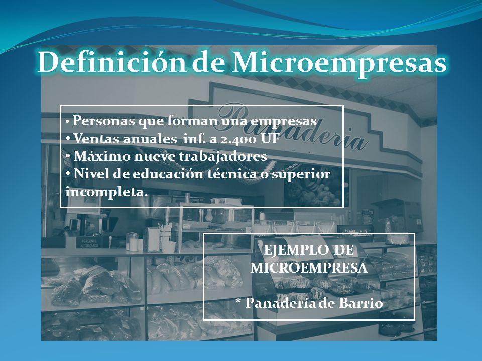 Definición de Microempresas EJEMPLO DE MICROEMPRESA