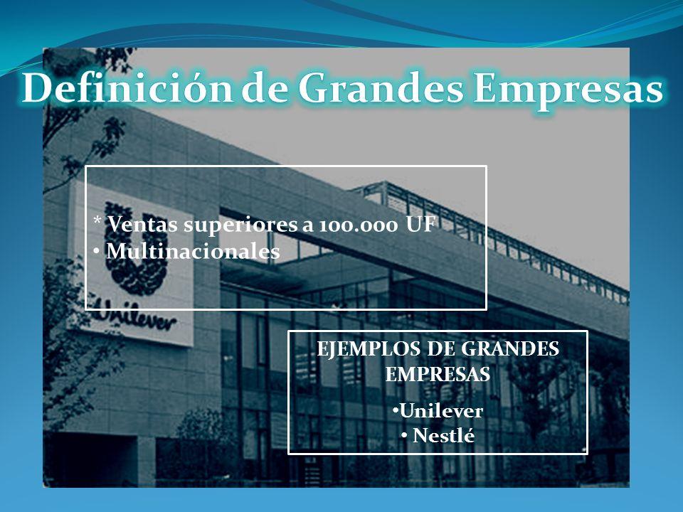 Definición de Grandes Empresas EJEMPLOS DE GRANDES EMPRESAS
