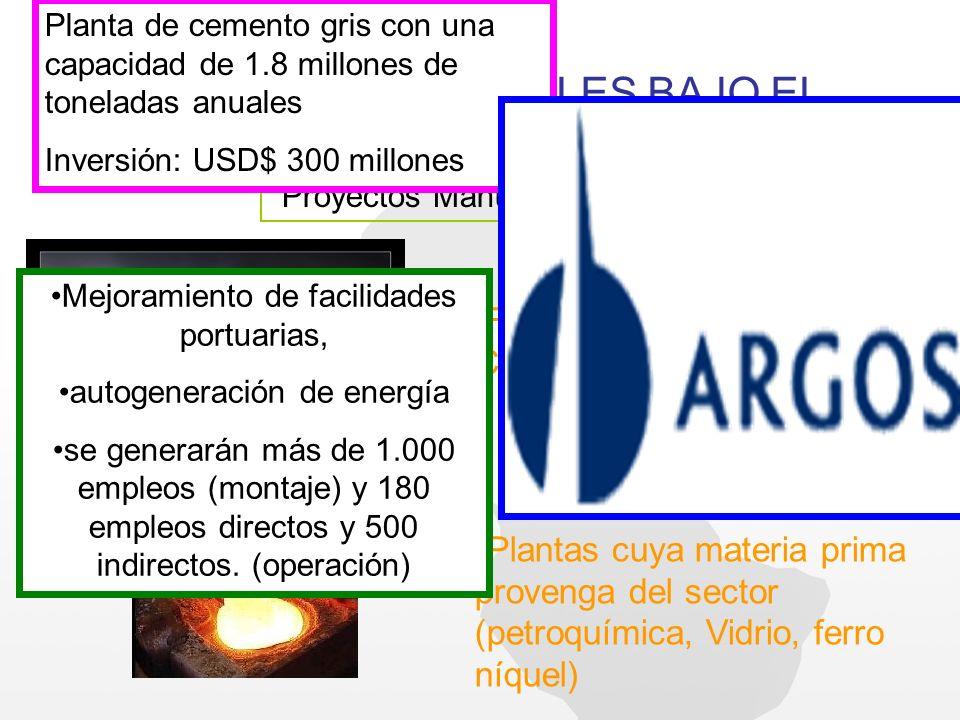 PROYECTOS FACTIBLES BAJO EL REGIMEN DE ZF HOY