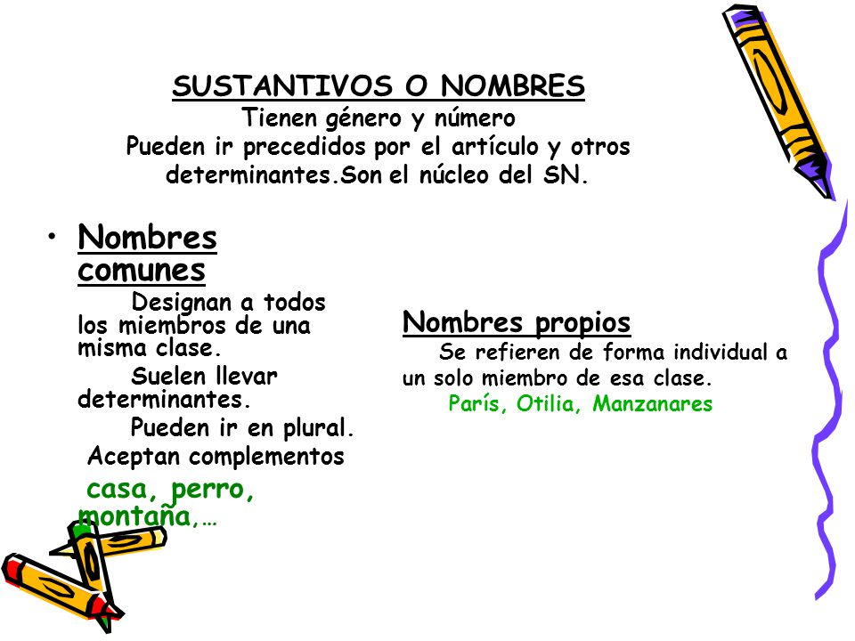 SUSTANTIVOS O NOMBRES Tienen género y número Pueden ir precedidos por el artículo y otros determinantes.Son el núcleo del SN.