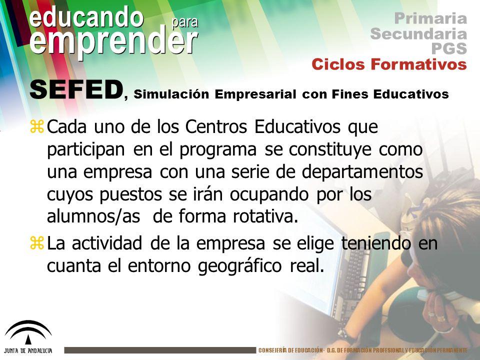 SEFED, Simulación Empresarial con Fines Educativos