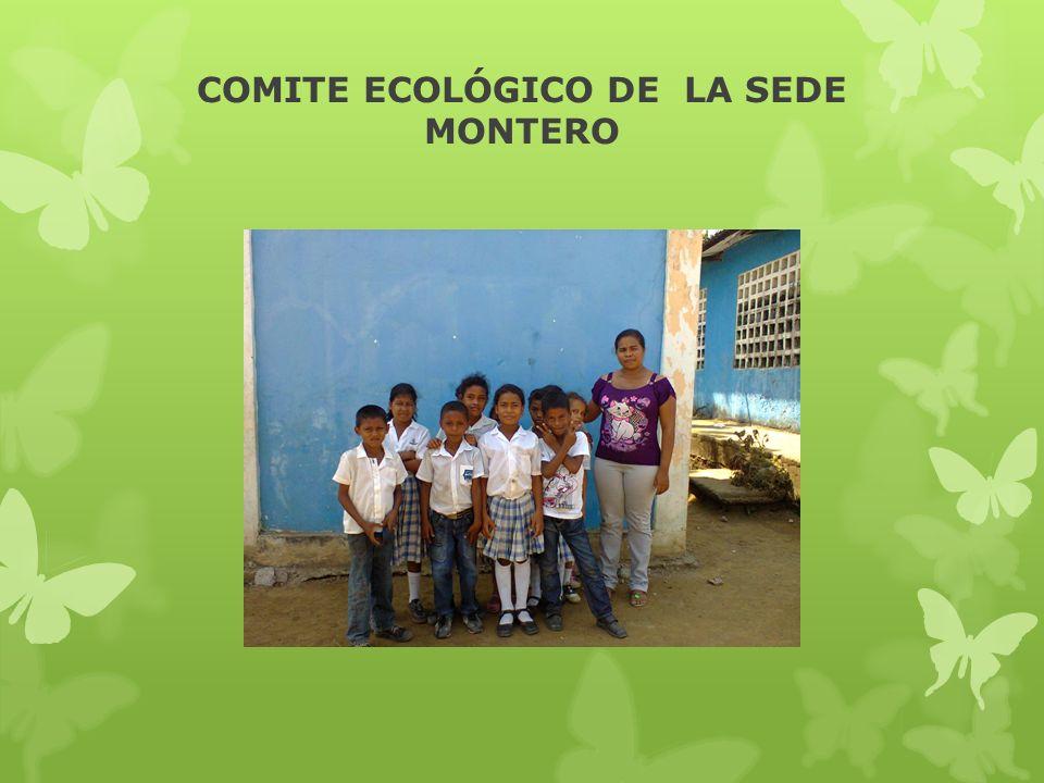COMITE ECOLÓGICO DE LA SEDE MONTERO
