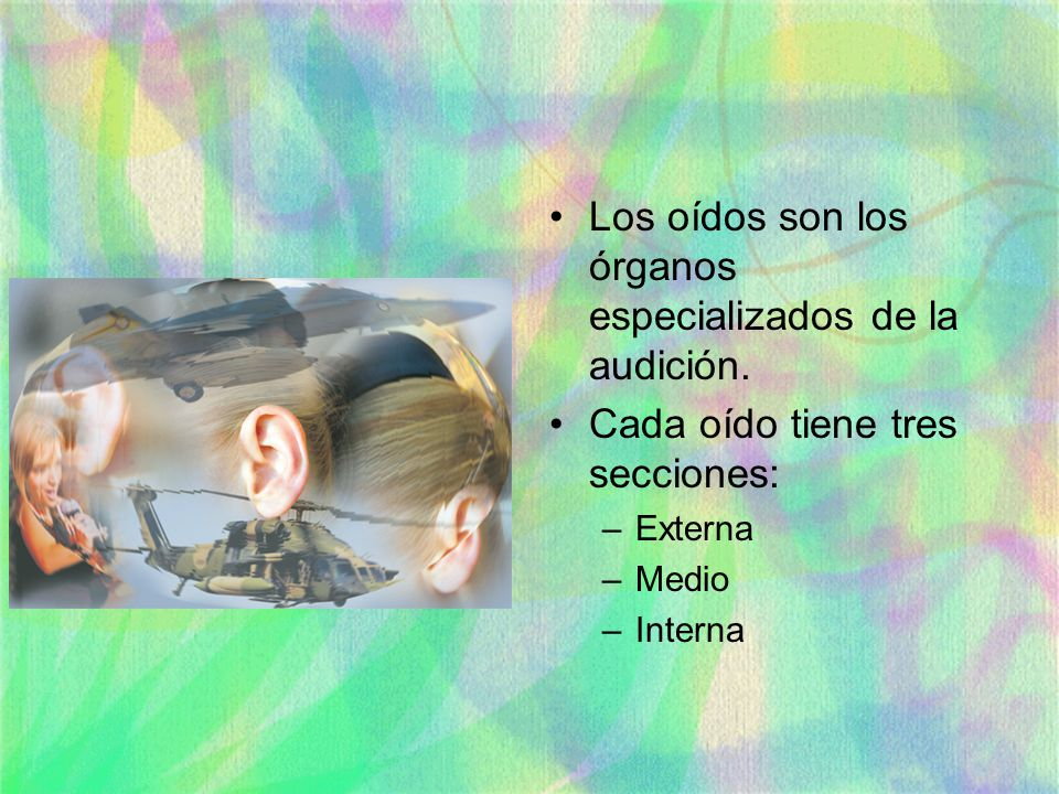 Los oídos son los órganos especializados de la audición.