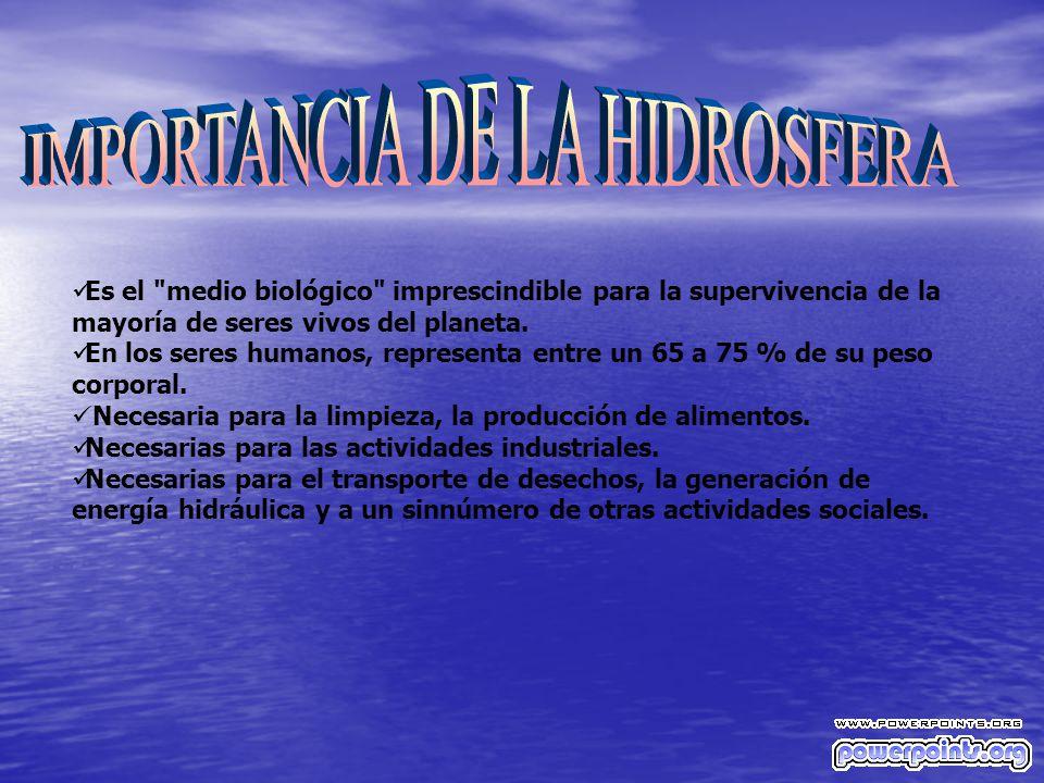 IMPORTANCIA DE LA HIDROSFERA