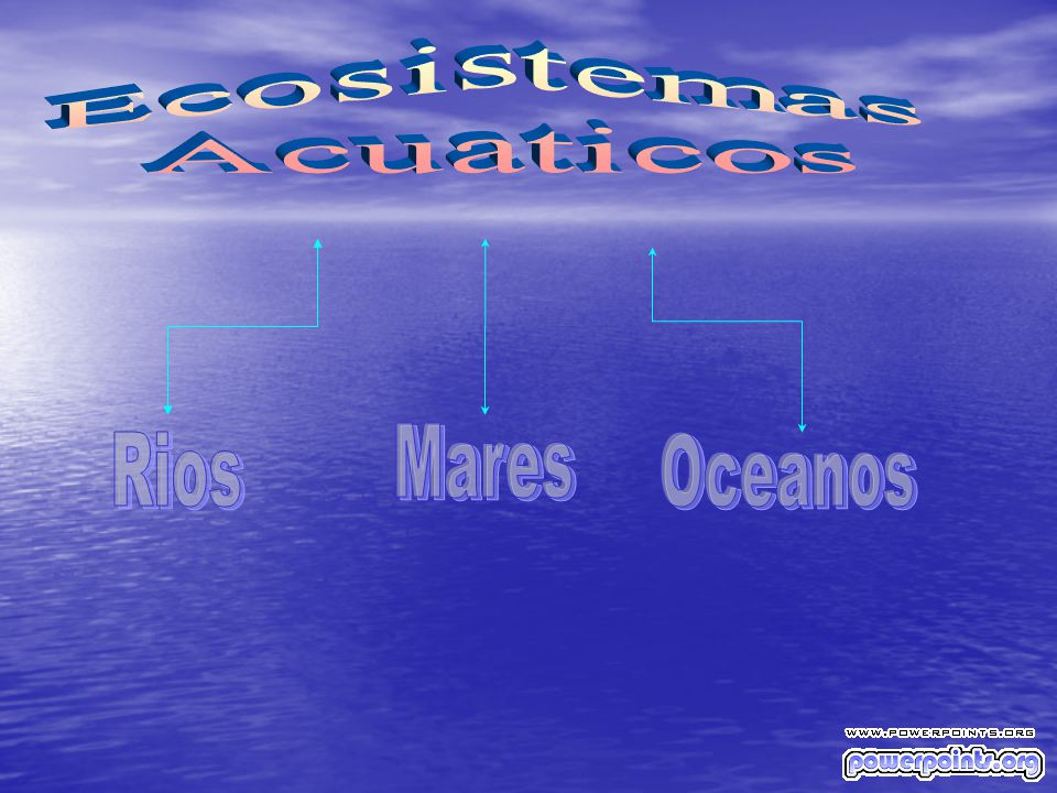 Ecosistemas Acuaticos Mares Rios Oceanos