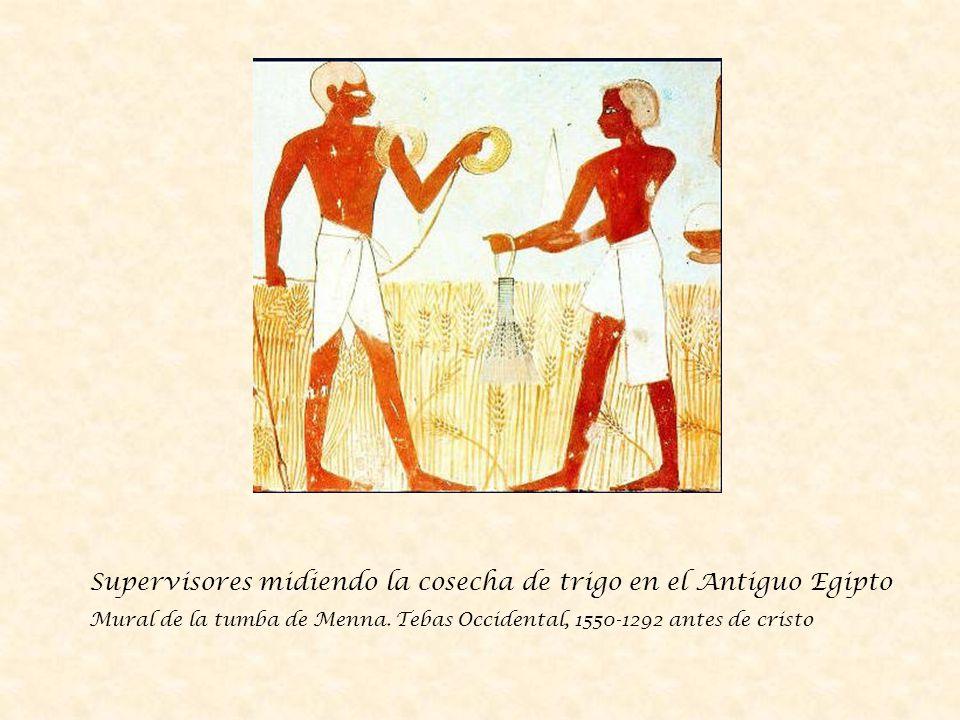 Supervisores midiendo la cosecha de trigo en el Antiguo Egipto
