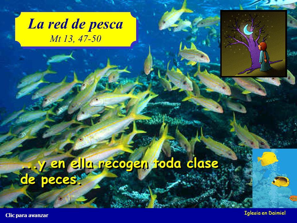 La red de pesca ...y en ella recogen toda clase de peces. Mt 13, 47-50