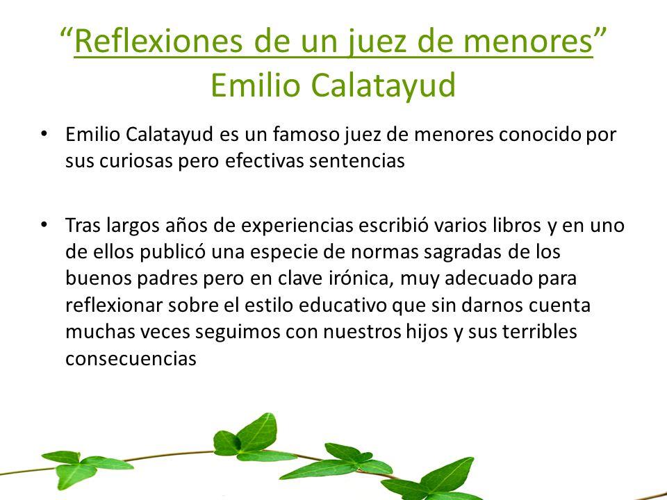 Reflexiones de un juez de menores Emilio Calatayud