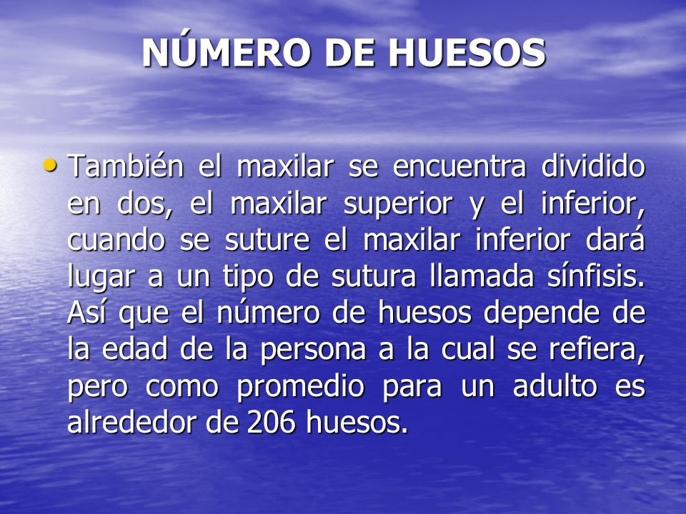 NÚMERO DE HUESOS