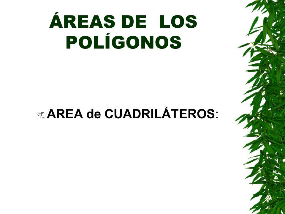 ÁREAS DE LOS POLÍGONOS AREA de CUADRILÁTEROS: