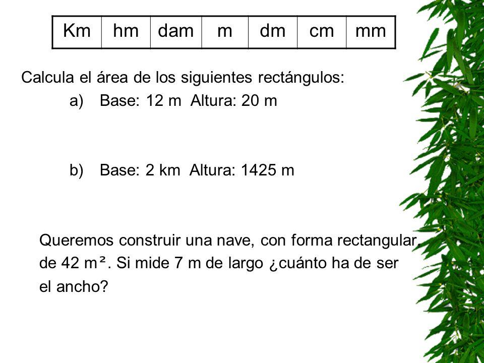 Km hm dam m dm cm mm Calcula el área de los siguientes rectángulos: