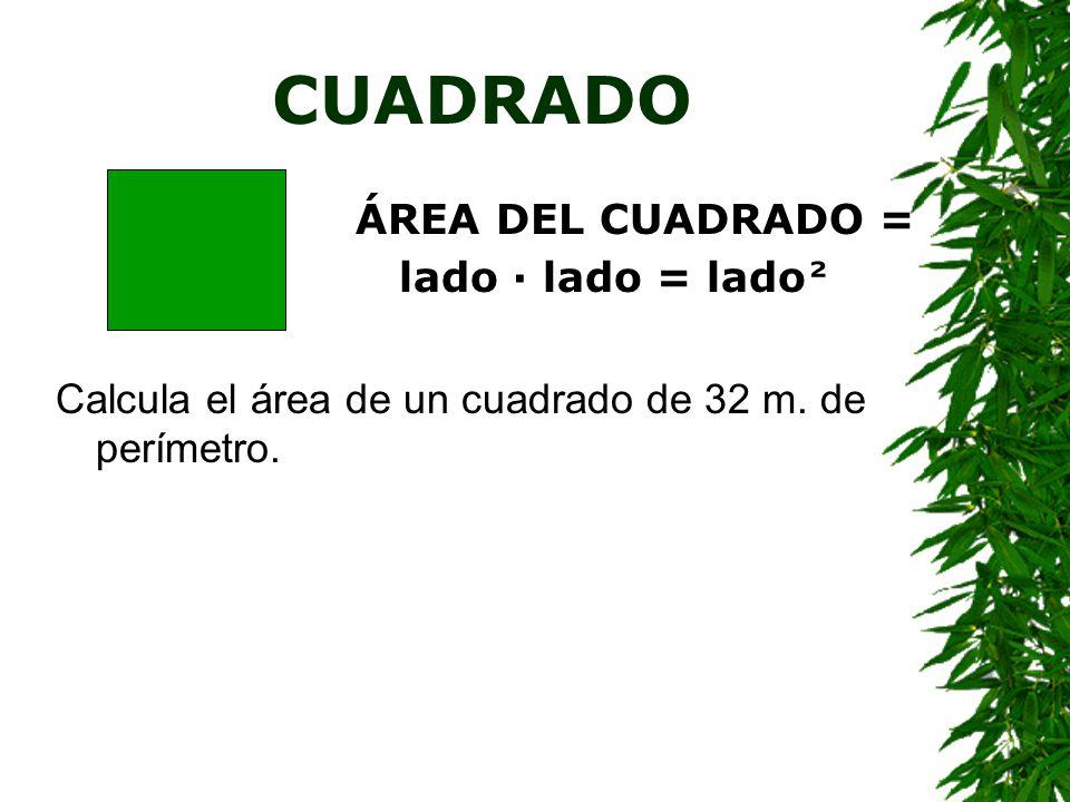 CUADRADO ÁREA DEL CUADRADO = lado · lado = lado²