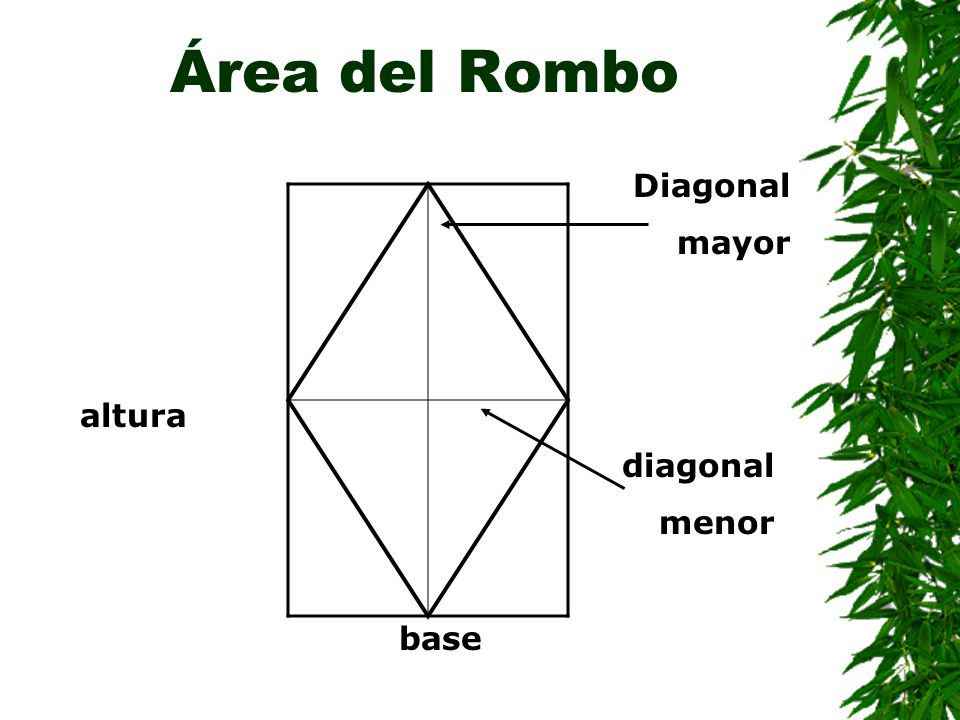 Área del Rombo Diagonal mayor altura diagonal menor base