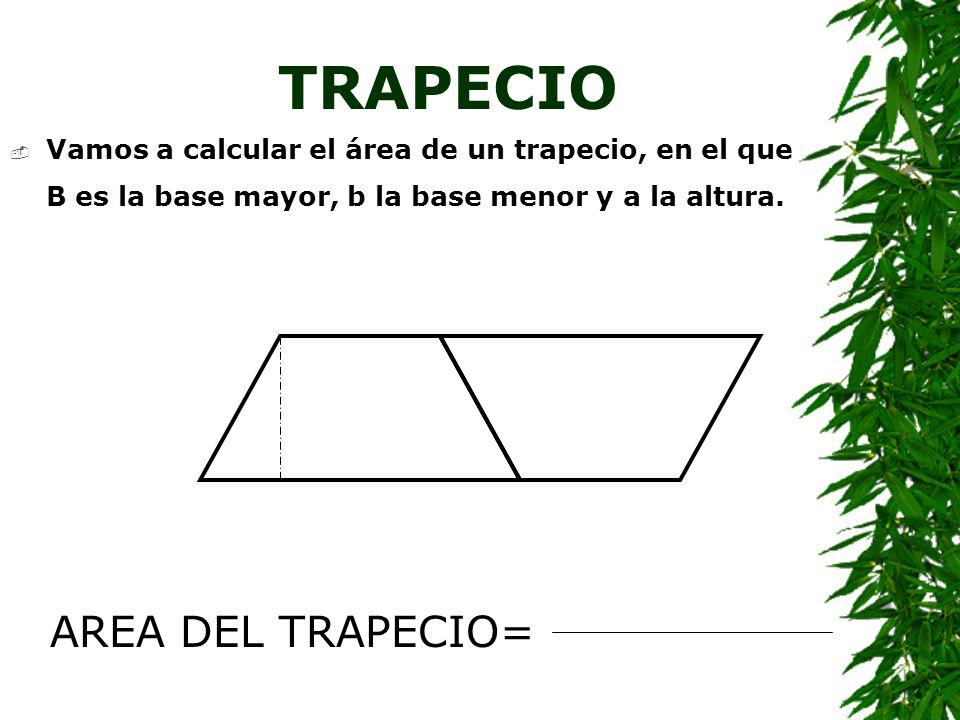 TRAPECIO AREA DEL TRAPECIO=
