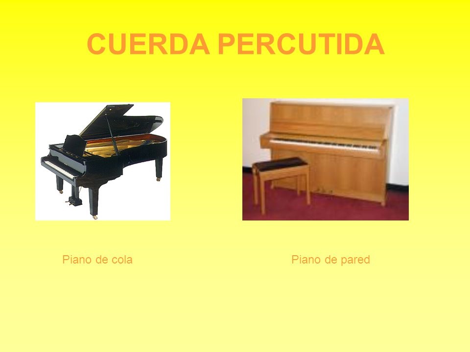 CUERDA PERCUTIDA Piano de cola Piano de pared