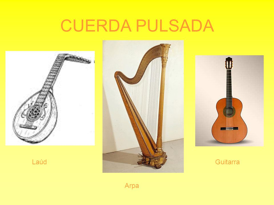 CUERDA PULSADA Laúd Guitarra Arpa