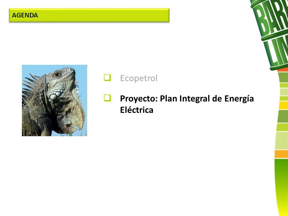 Proyecto: Plan Integral de Energía Eléctrica