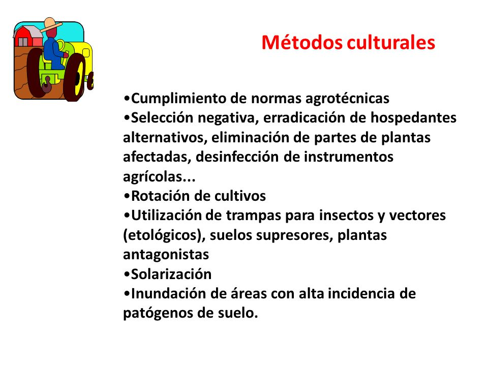 Métodos culturales Cumplimiento de normas agrotécnicas