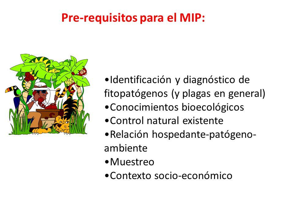 Pre-requisitos para el MIP: