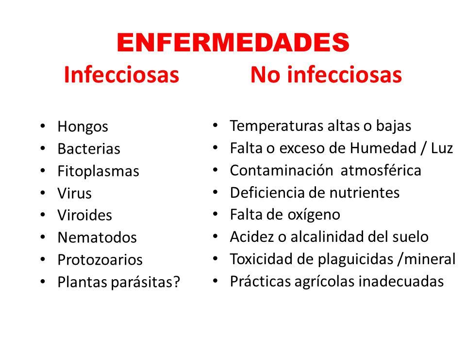 ENFERMEDADES Infecciosas No infecciosas