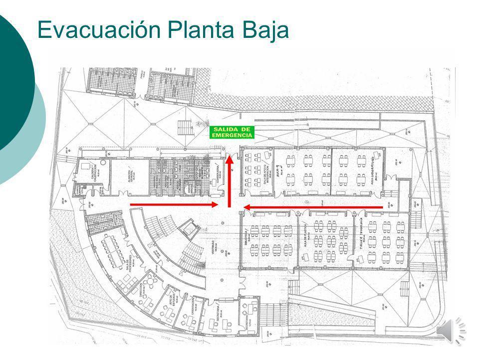 Evacuación Planta Baja