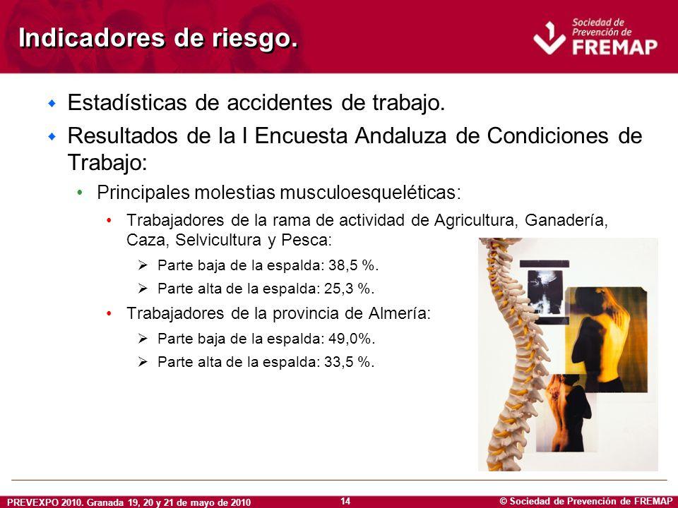 Indicadores de riesgo. Estadísticas de accidentes de trabajo.