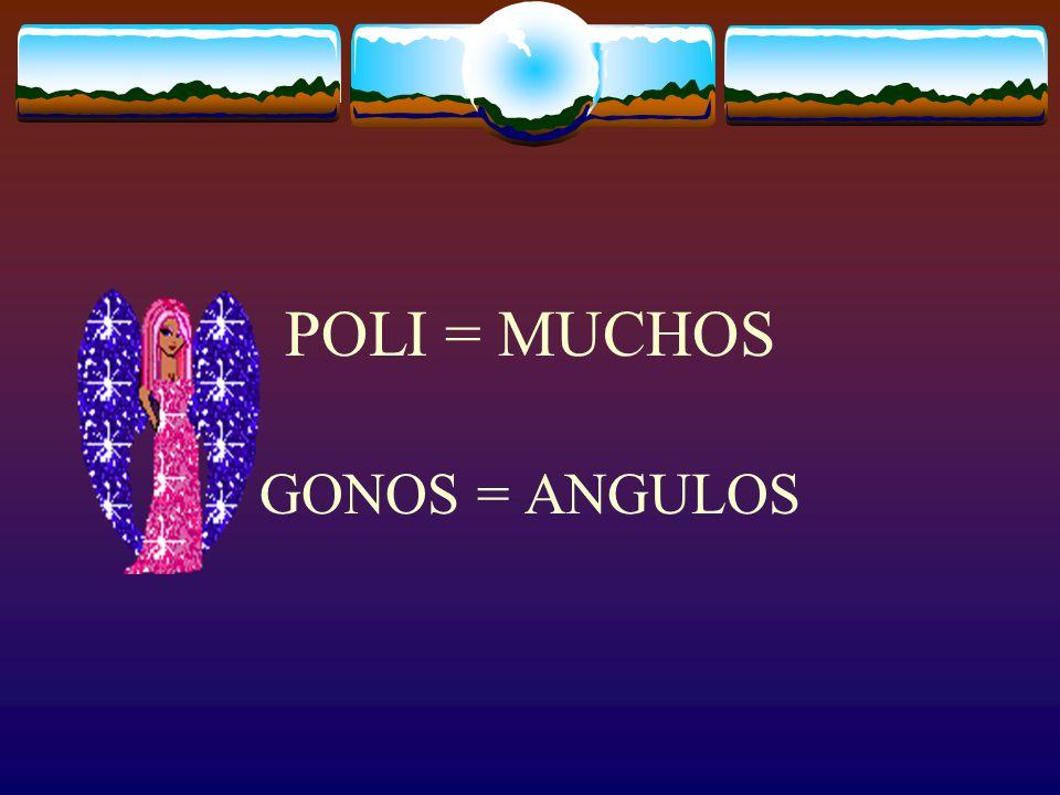 POLI = MUCHOS GONOS = ANGULOS