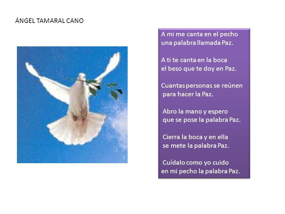 ÁNGEL TAMARAL CANO