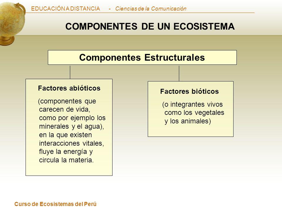 COMPONENTES DE UN ECOSISTEMA Componentes Estructurales