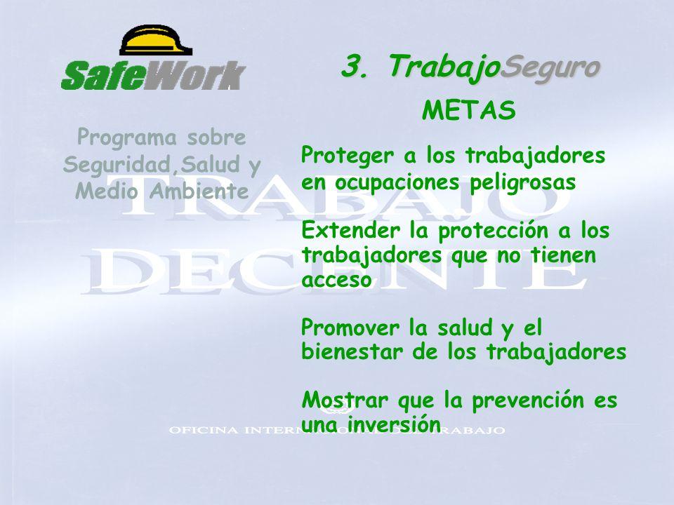 Programa sobre Seguridad,Salud y Medio Ambiente