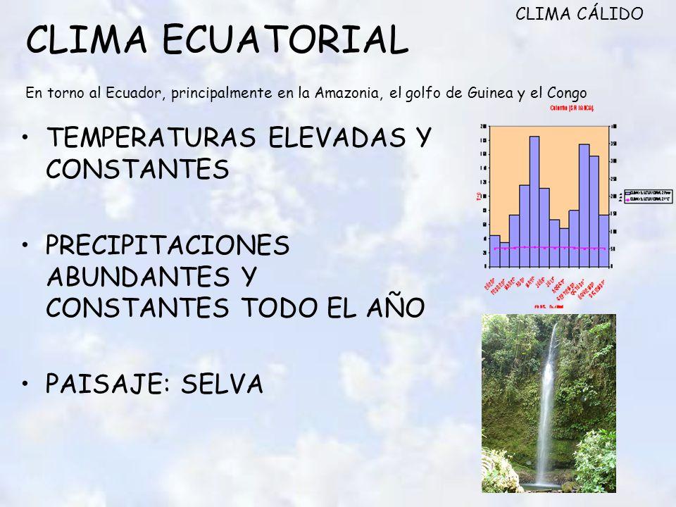 CLIMA CÁLIDO CLIMA ECUATORIAL En torno al Ecuador, principalmente en la Amazonia, el golfo de Guinea y el Congo.