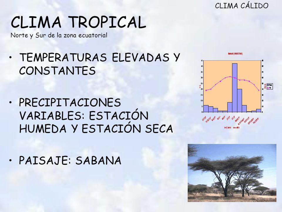 CLIMA TROPICAL Norte y Sur de la zona ecuatorial