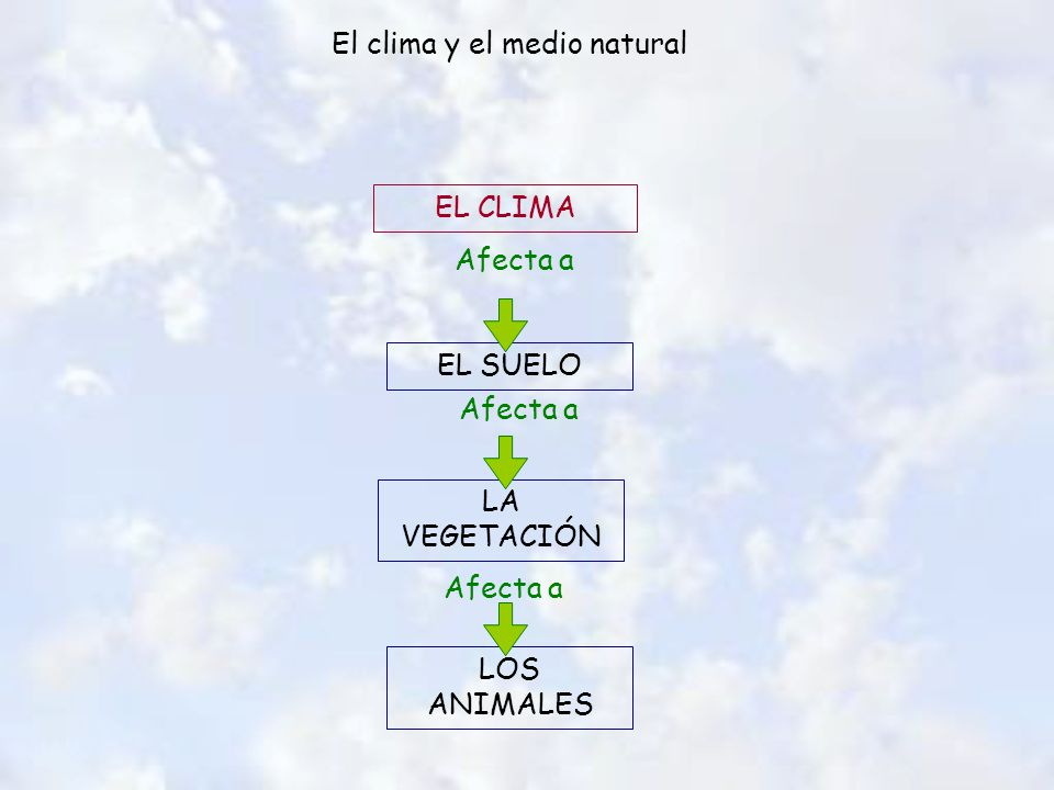 El clima y el medio natural