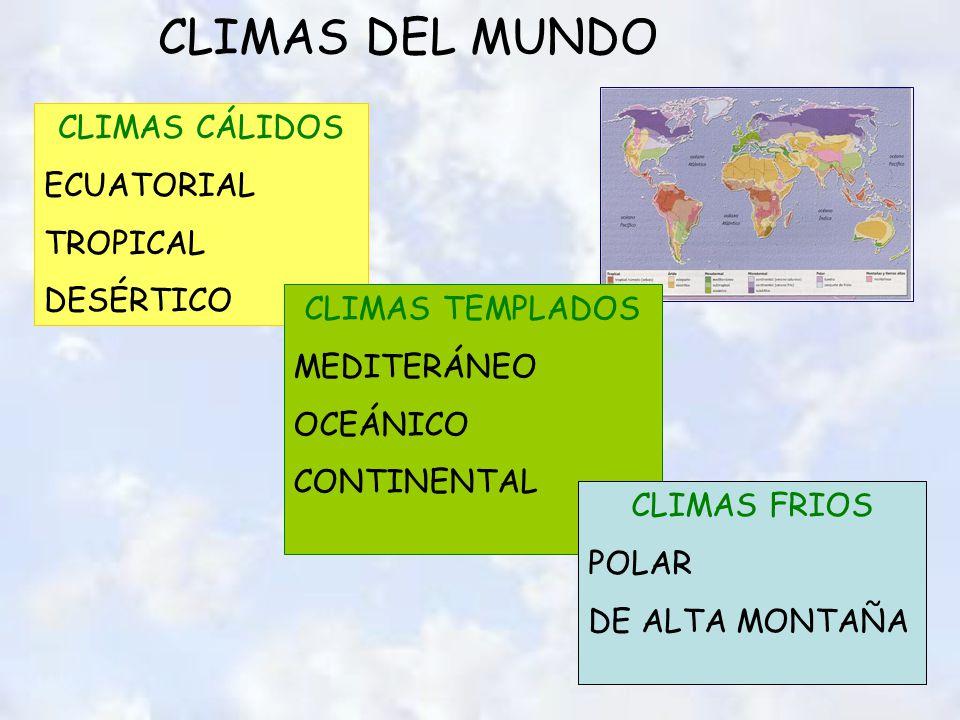 CLIMAS DEL MUNDO CLIMAS CÁLIDOS ECUATORIAL TROPICAL DESÉRTICO