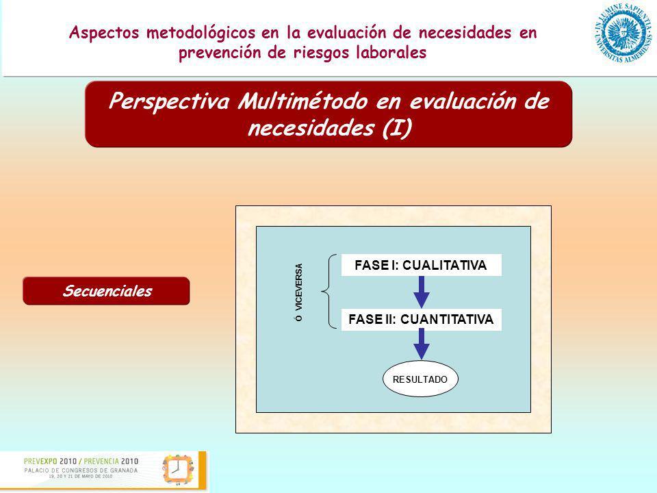 Perspectiva Multimétodo en evaluación de necesidades (I)