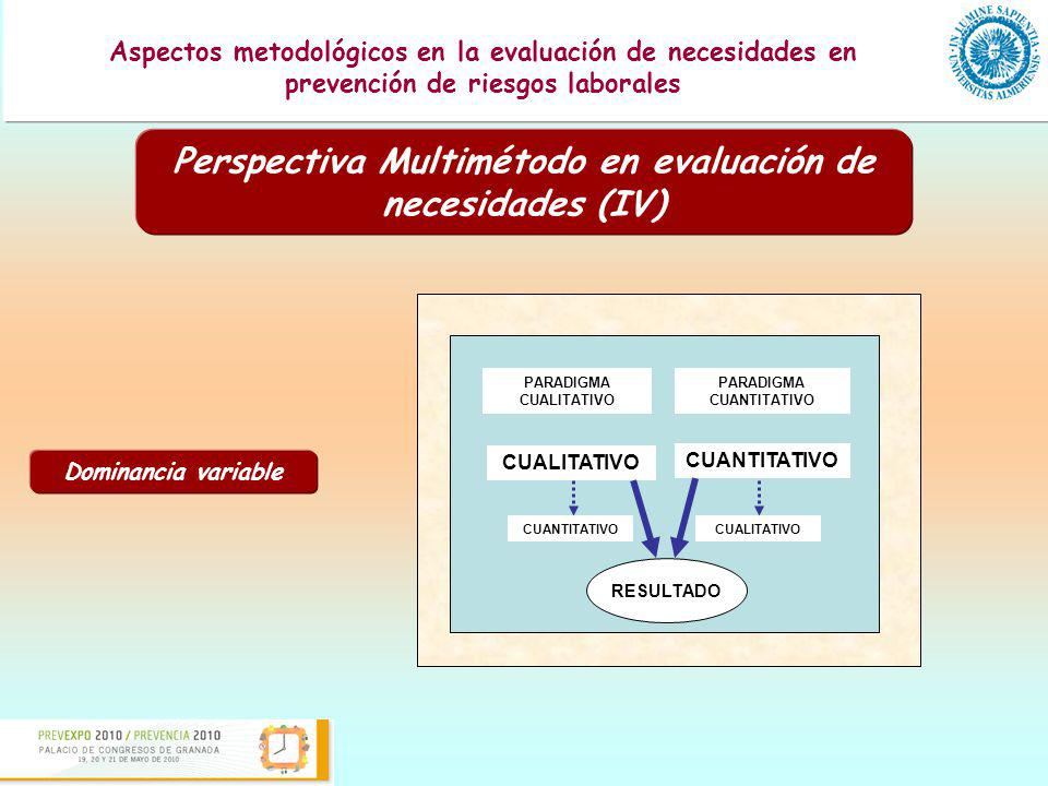 Perspectiva Multimétodo en evaluación de necesidades (IV)