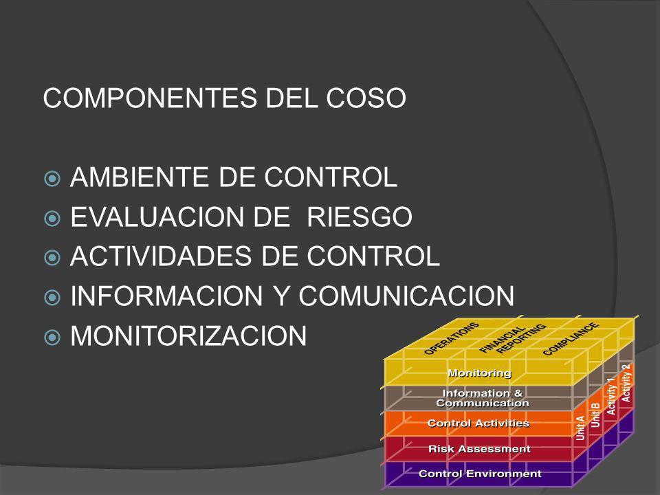 COMPONENTES DEL COSO AMBIENTE DE CONTROL. EVALUACION DE RIESGO. ACTIVIDADES DE CONTROL. INFORMACION Y COMUNICACION.