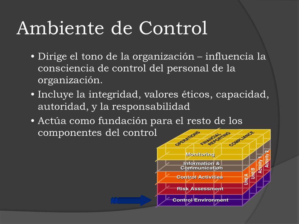 Ambiente de Control Dirige el tono de la organización – influencia la consciencia de control del personal de la organización.