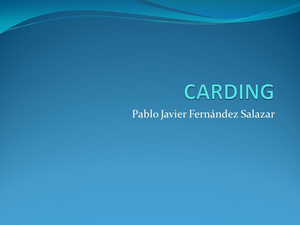 Pablo Javier Fernández Salazar