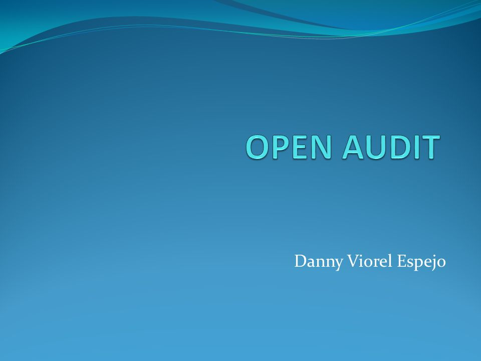 OPEN AUDIT Danny Viorel Espejo