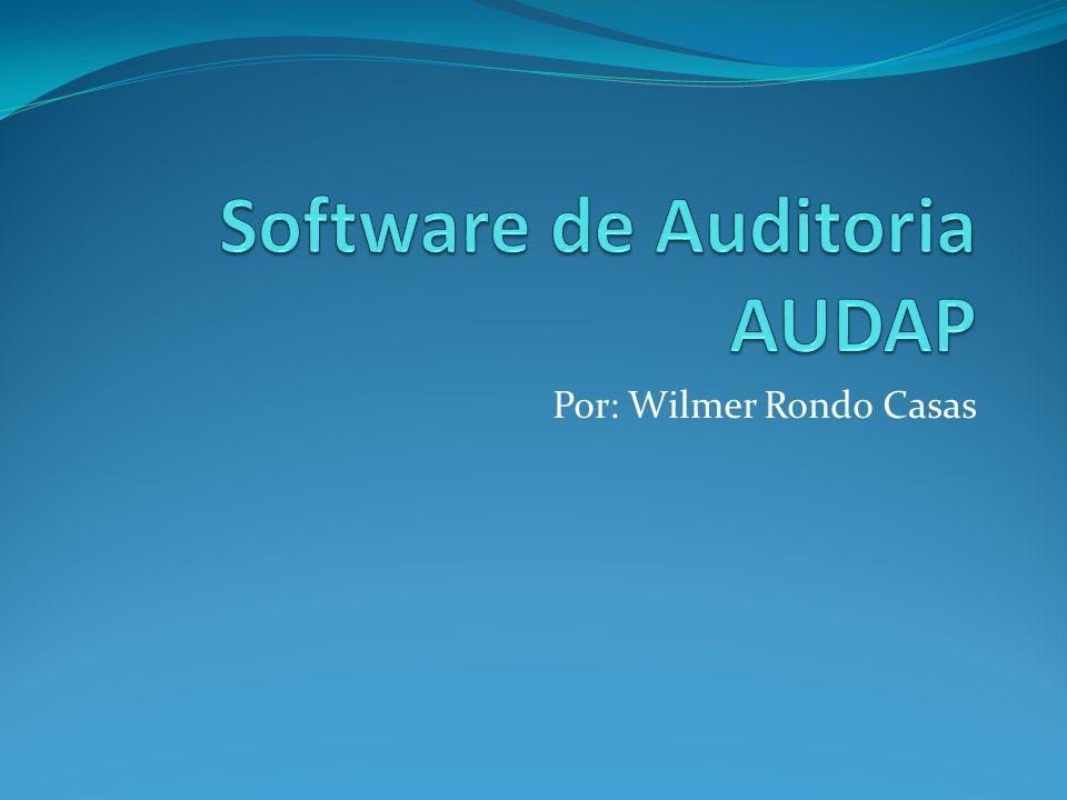 Software de Auditoria AUDAP