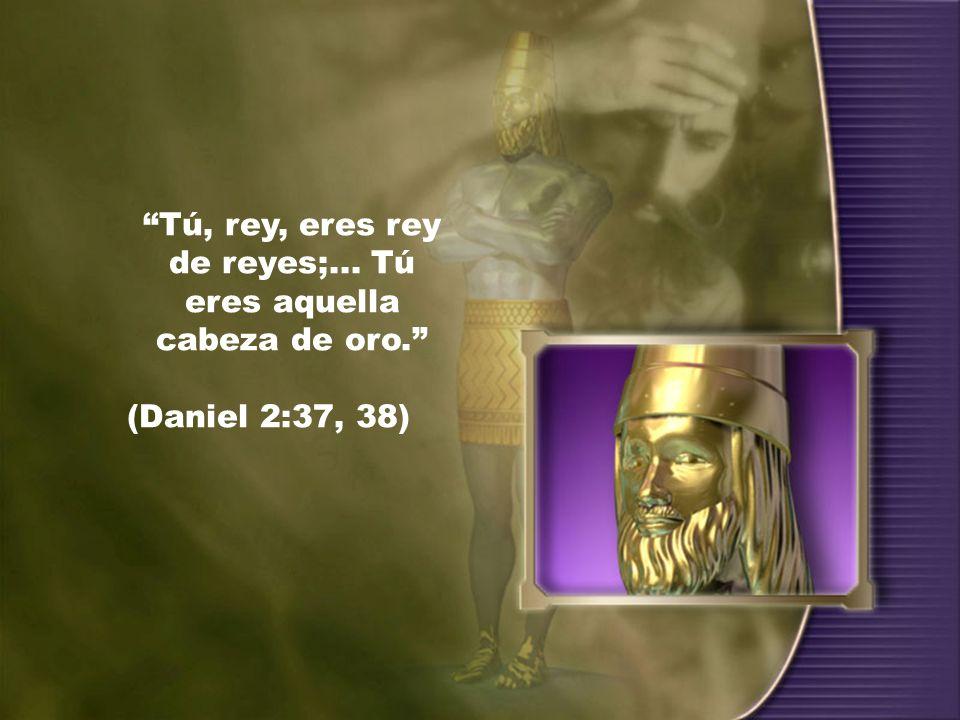 Tú, rey, eres rey de reyes;... Tú eres aquella cabeza de oro.