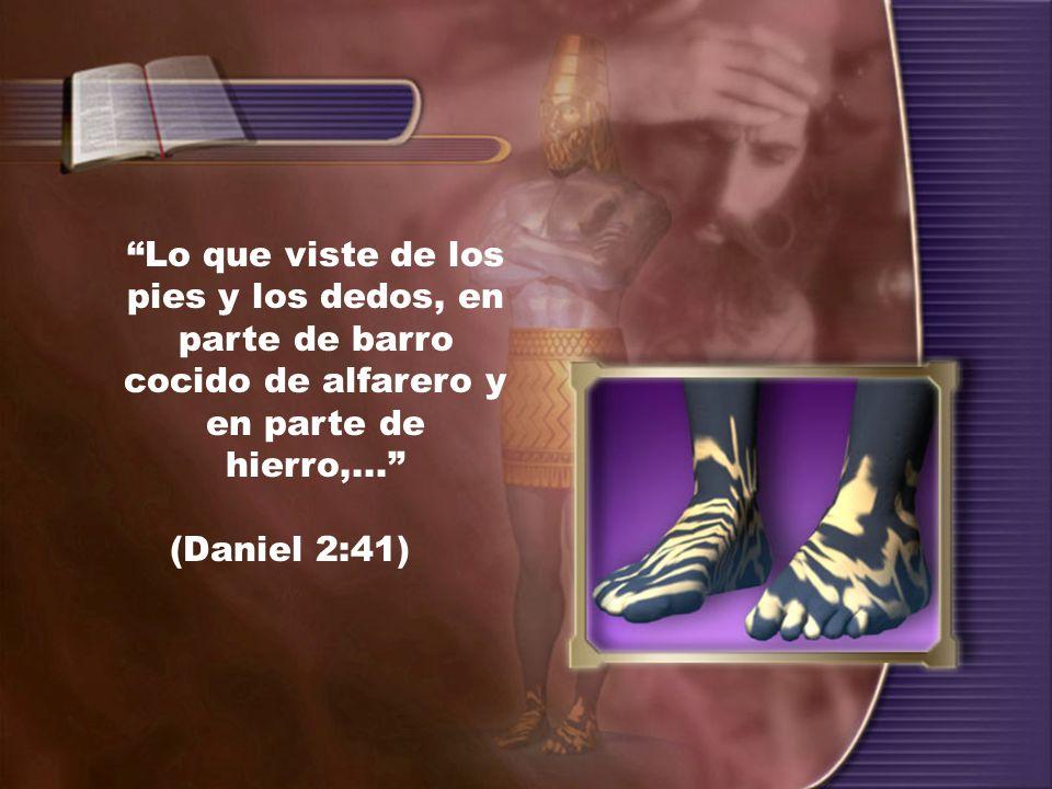 Lo que viste de los pies y los dedos, en parte de barro cocido de alfarero y en parte de hierro,...