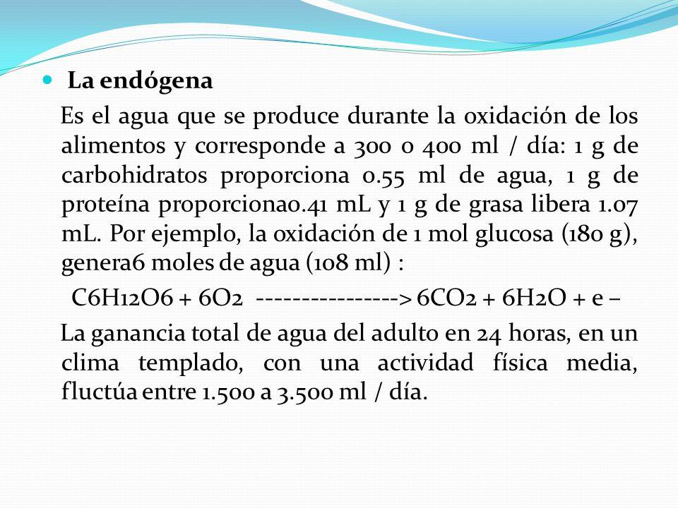 La endógena